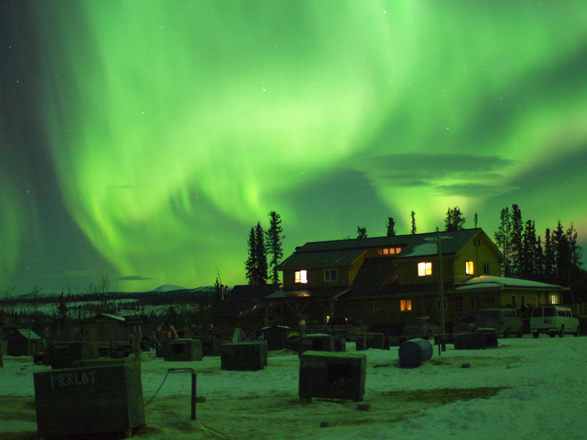 Northern Lights on full blast at Muktuk Adventures!