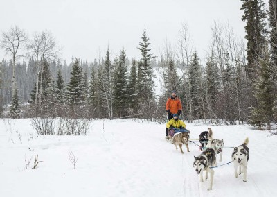 c130002_245rr1-yukon-dog-sledding-tour