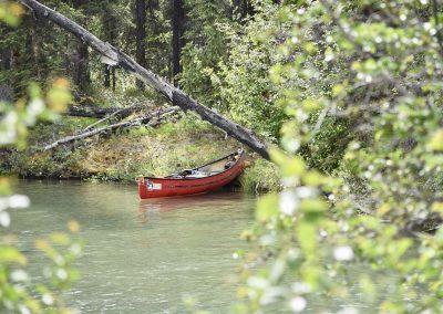 fullsizeoutput_952-canoeing-yukon
