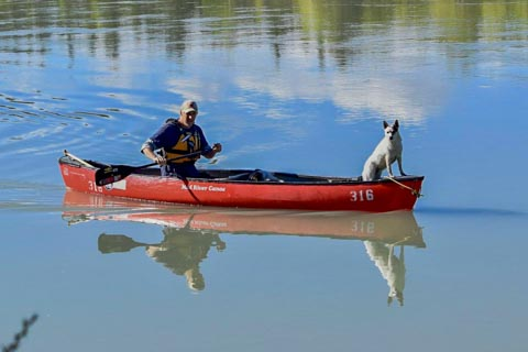 dog and person in canoe on river reflecting in water